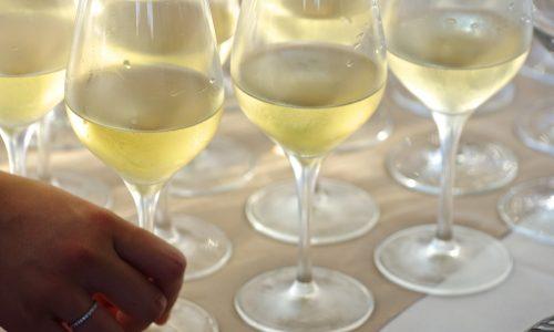 Vatel Bordeaux - Aquitaine Organic Winegrowers competition